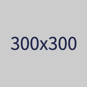 配布パッケージ用画像300x300